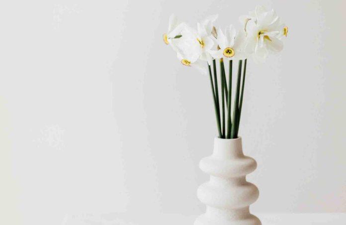 Les fleurs odorantes pour agrémenter son intérieur